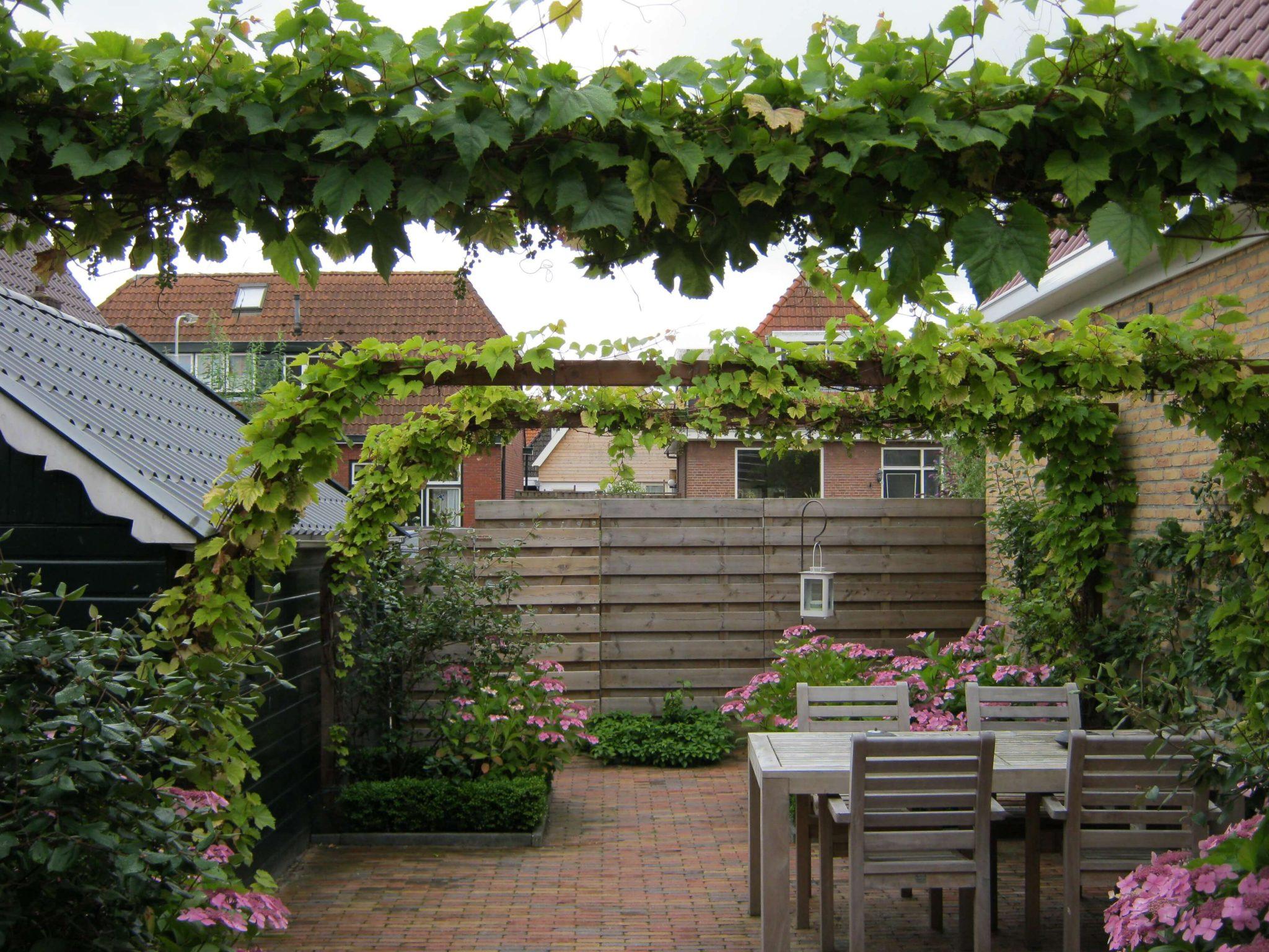 Stadstuinen marijke hulzenga tuinontwerp for Stadstuinen voorbeelden